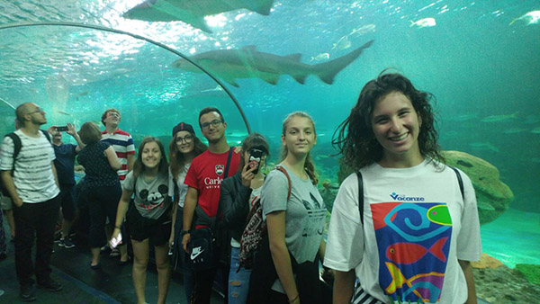 Students spend a day at the aquarium during the summer program